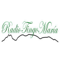 radio tingo maria