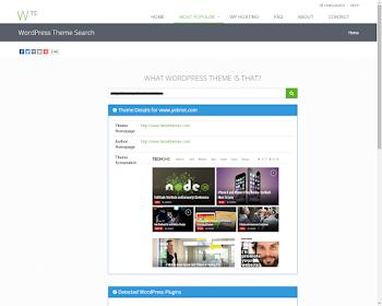 Wordpress Temasını Bulma