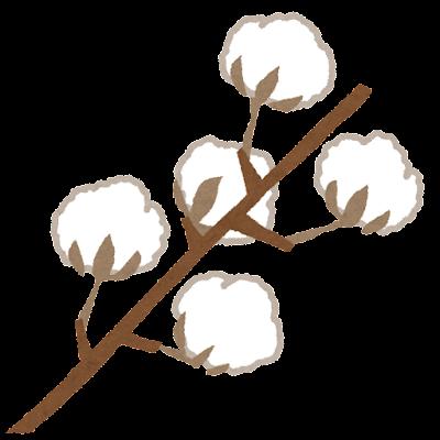綿花のイラスト