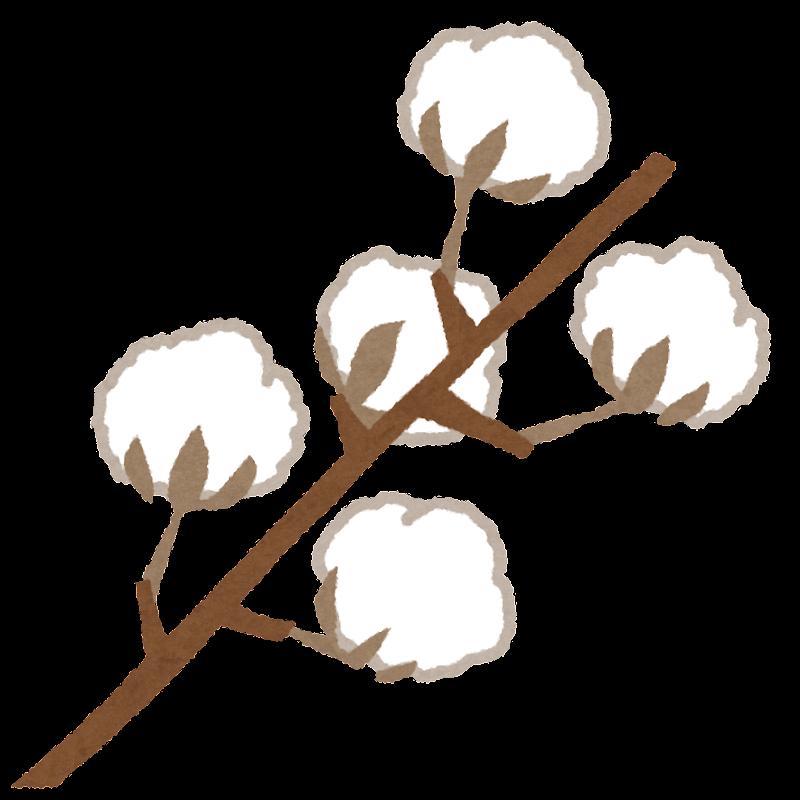 綿花のイラスト | かわいいフリー素材集 いらすとや