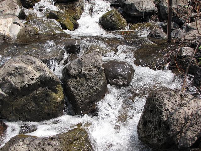 נחל ג'ילבון גולש על סלעים