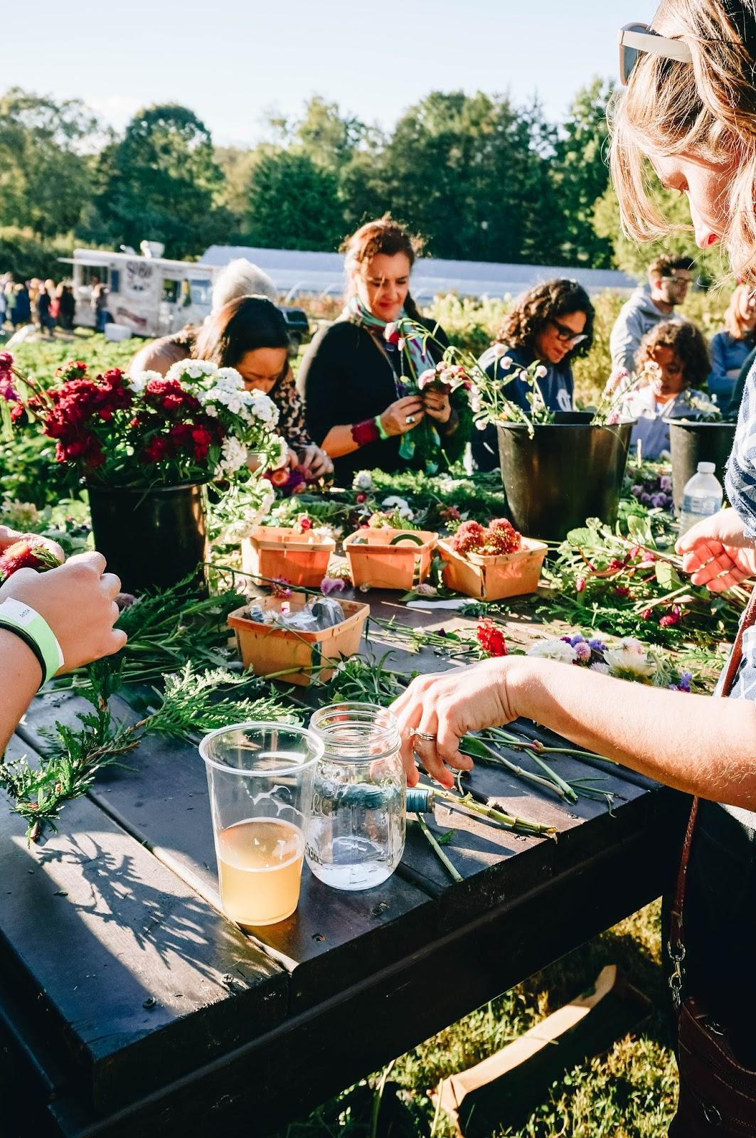 flower festival - wollam gardens