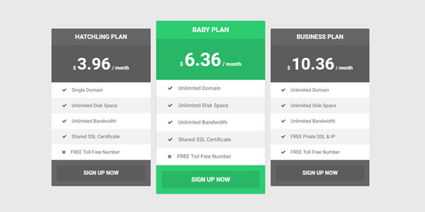 Flat Responsive Pricing Tables - Pure CSS