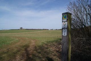 Eine weite Wiese, davor ein Holzpfeiler mit den Wegzeichen des Eifelsteigs, Römerkanal Wanderweg und Eifeler Quellenpfad
