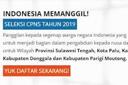 Lowongan Pekerjaan Terbaru PPPK sampai 19 februari 2019 di situs SSCN.BKN.GO.ID
