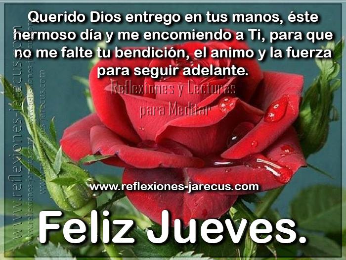 Querido Dios entrego en tus manos, éste hermoso día y me encomiendo a ti, para que no me falte tu bendición, el animo y la fuerza para seguir adelante. Feliz jueves.
