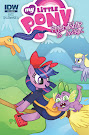 My Little Pony Friendship is Magic #30 Comic Cover Retailer Incentive Variant