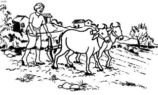 सुखदेव किसान