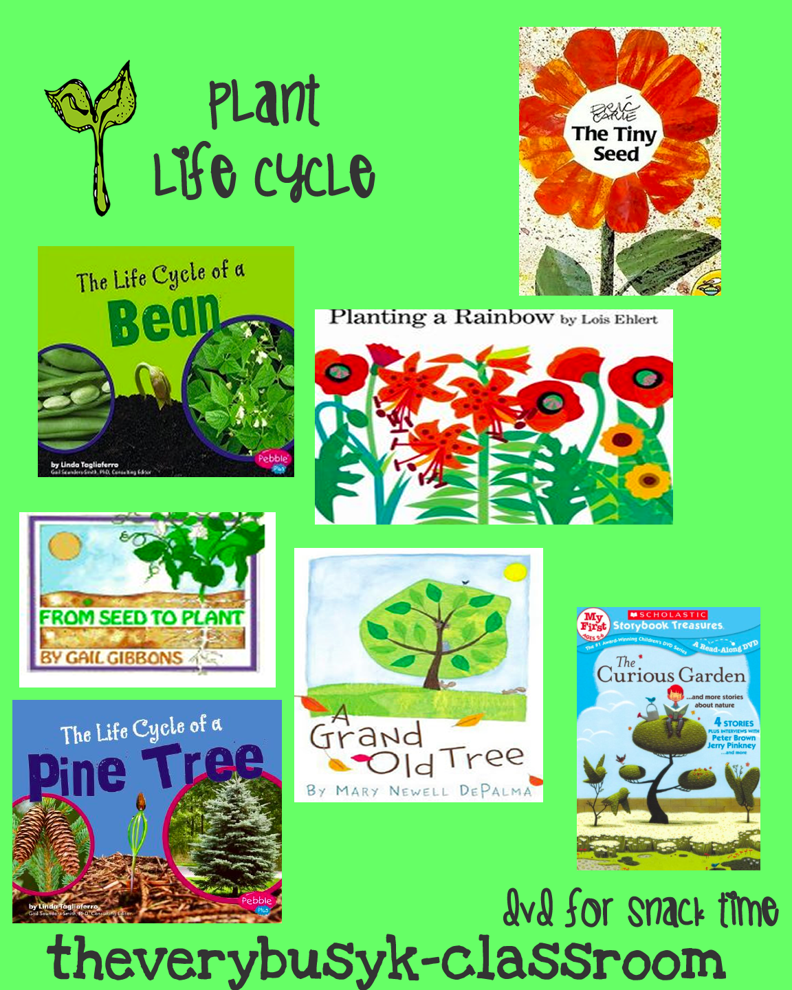 The Very Busy Kindergarten The Plant Life Cycle