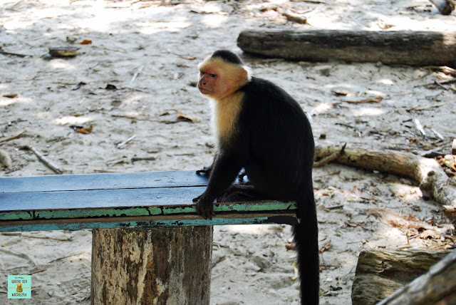 Parque Nacional de Manuel Antonio, Costa Rica