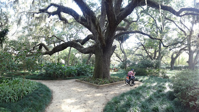 Washington Oaks Gardens State Park, Florida