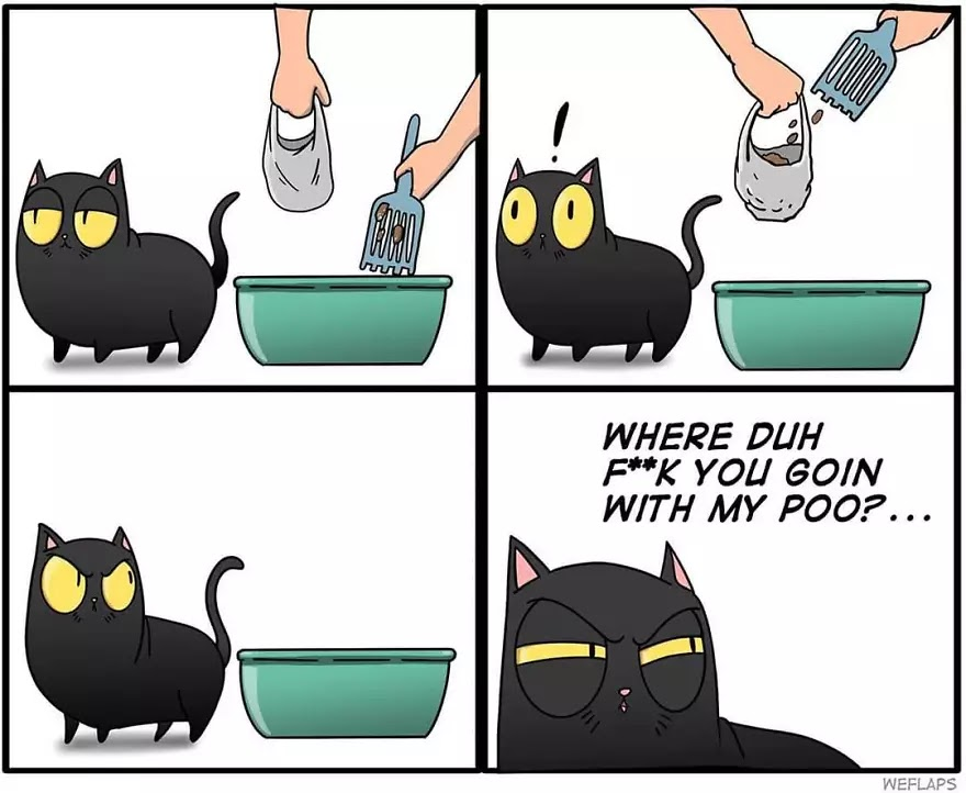 30 Hilariously Honest Comics That Depict What Living With A Cat Is Like