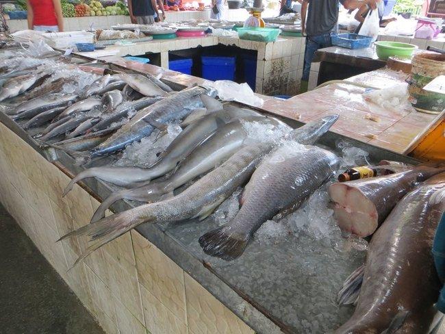 Свежая рыба на рынки