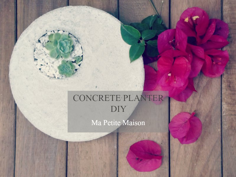 Concrete planter DIY by Ma Petite Maison