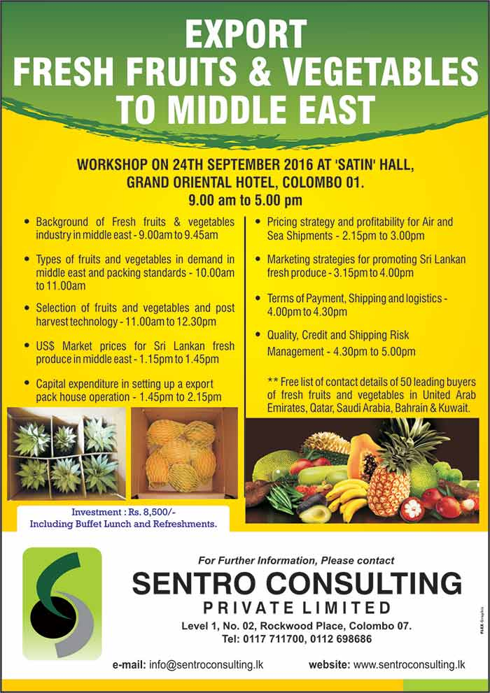 Export Fresh Fruits & Vegetables to Middle East | Powercampaigner