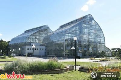 Nhà kính Vườn Bách thảo Moscow – kho báu thực vật quý hiếm.