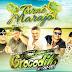 CD AO VIVO GIGANTE CROCODILO PRIME EM CAMETÁ 04-11-2018 - DJ GORDO E DINHO PRESSAO DINHO PRESSÃO