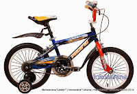 Sepeda Anak Pacific Avorio 16 Inci
