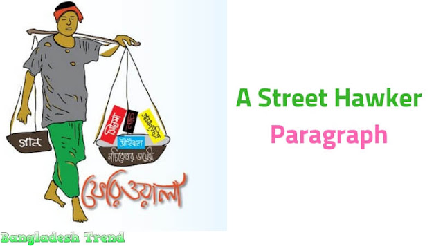 A Street Hawker Paragraph