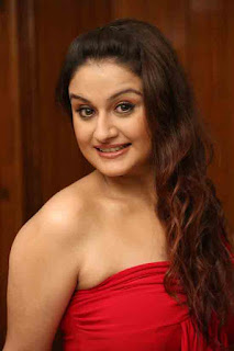 Sonia Agarwal Profile Biography Family Photos and Wiki and Biodata, Body Measurements, Age, Husband, Affairs and More...