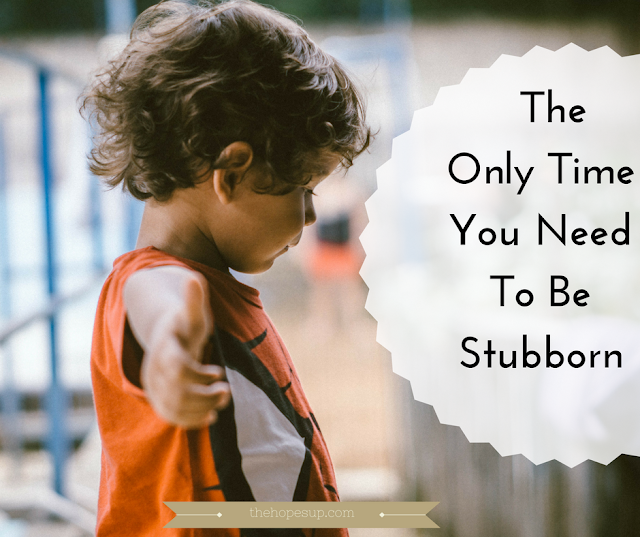 the only time you need to be stubborn