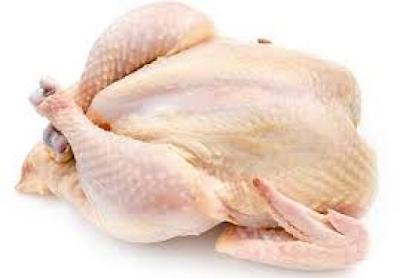 ayam potong Tangerang