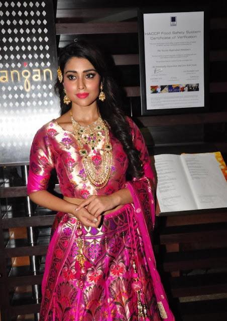 shriya saran photos at the wedding vow fashion show 25 - Shriya Saran in Pithani Silk Lehenga. wedding wows fashion show