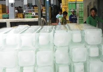Inilah Cara Membedakan Es Air Mentah dengan Es Air Matang