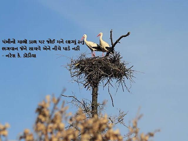 पंखीनो माळॉ डाळ पर जोई मने लाग्युं हतुं Gujarati Sher By Naresh K. Dodia