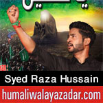 http://www.humaliwalayazadar.com/2017/09/syed-raza-hussain-nohay-2018.html