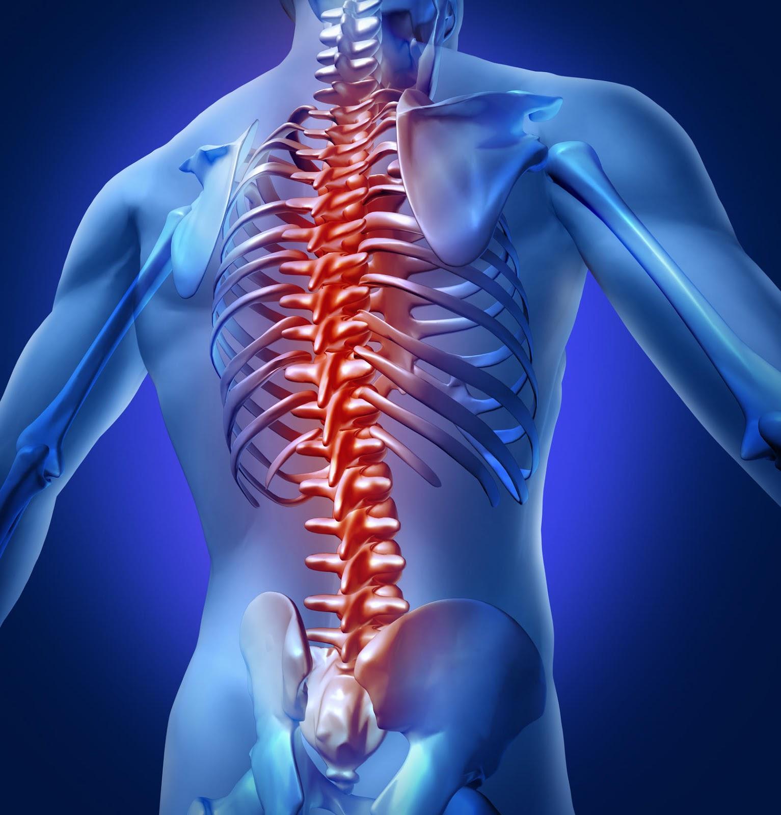 Hasil gambar untuk cedera saraf tulang belakang
