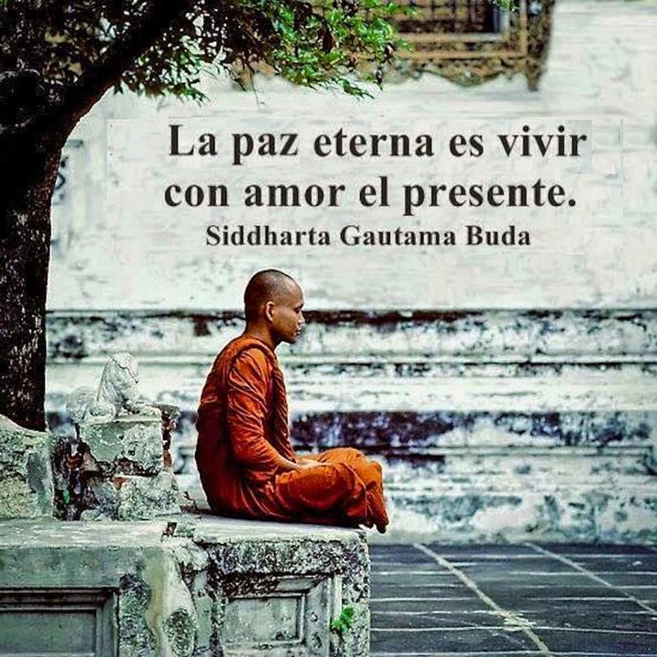 Laïka Actitud Siete Frases Budistas Que Cambian La Vida