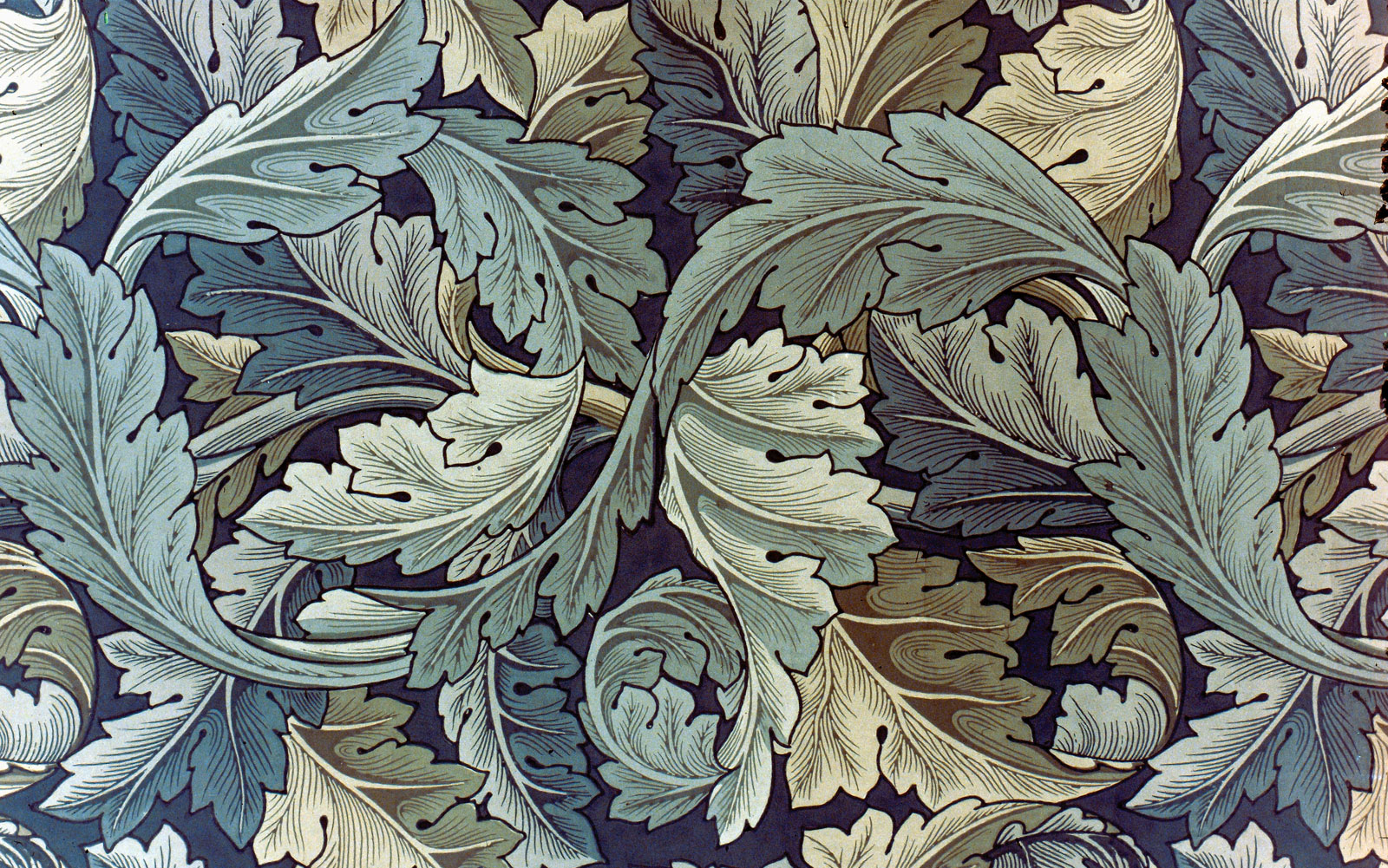 Fast Pics2: Morris Co Wallpaper William Morris Acorn