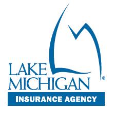 Lake michigan credit union hsa investment options