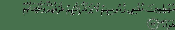 Surat Ibrahim Ayat 43