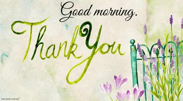 gm thank you thanks greeting card