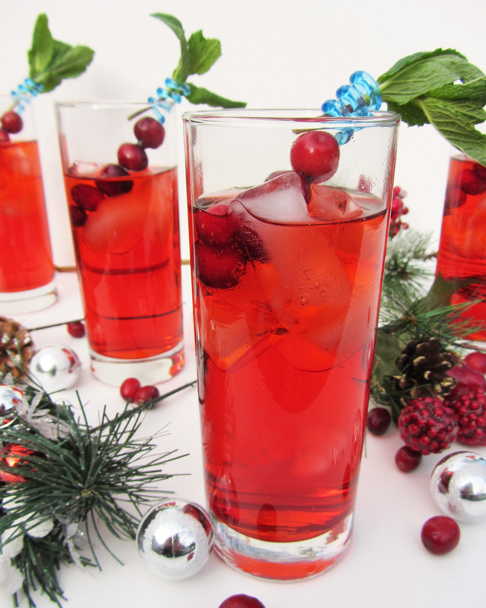 Cranberry Fizz Cocktail Recipe: Cranberry Gin Fizz (and Merry Christmas!)