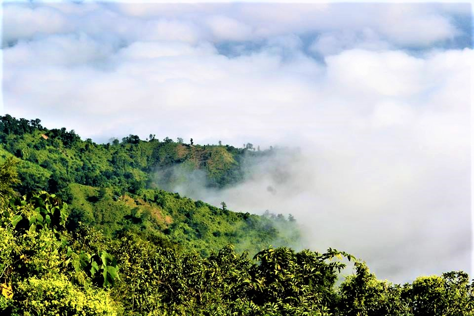 Bandarban Nilgiri