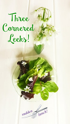 green salad with firaged three cornered leeks flowers and leaves