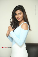 Anisha Ambrose Latest Pos Skirt at Fashion Designer Son of Ladies Tailor Movie Interview .COM 0642.JPG