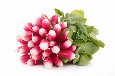 Radis rose : bienfaits et vertus pour la santé