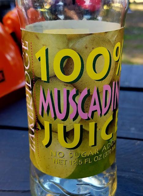 Day trip ao ar livre em Orlando, Florida suco de uva