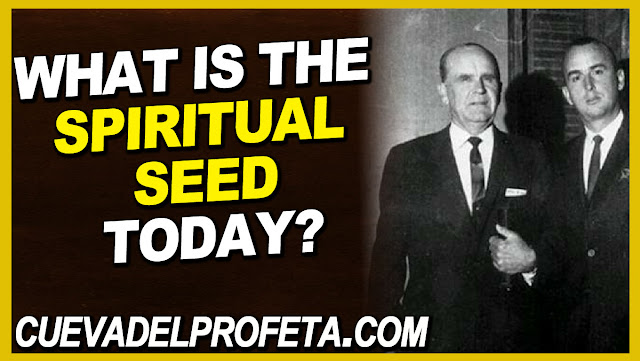 What is the spiritual Seed today - William Marrion Branham Quotes