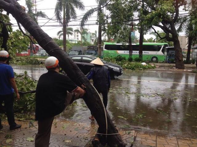 Bão Mirinae Đổ Bộ Gây Thiệt Hại Cho FPT Ninh Bình Và Nam Định 4