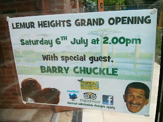 Grand opening of Lemur heights