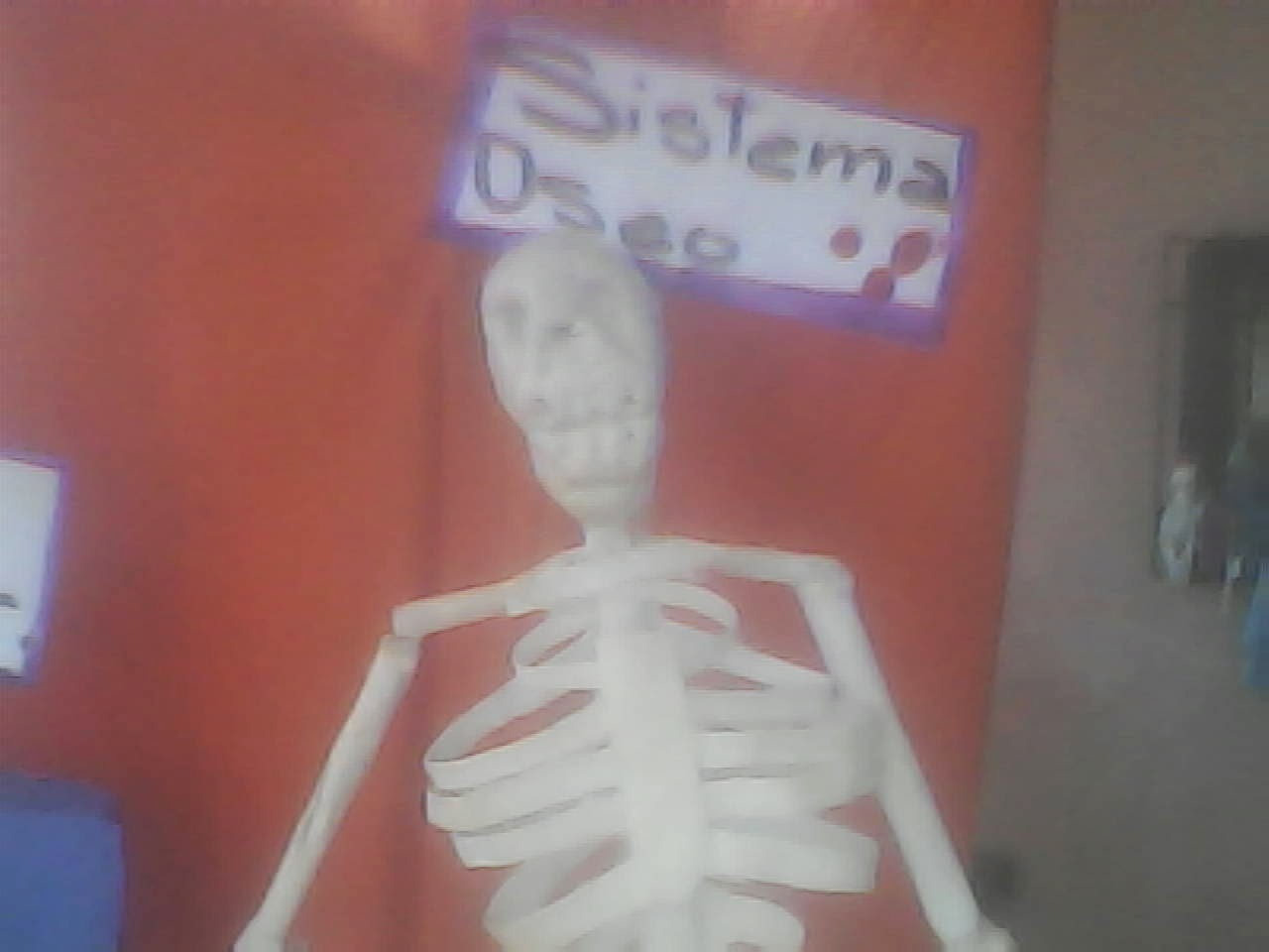 Manualidades Lenis Esqueleto Humano Con Material Reciclado