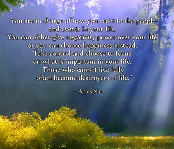 Focus On What You Can Control Quotes: What Is Important In Life By Anais Nin