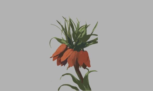 Blumen- im Gedicht