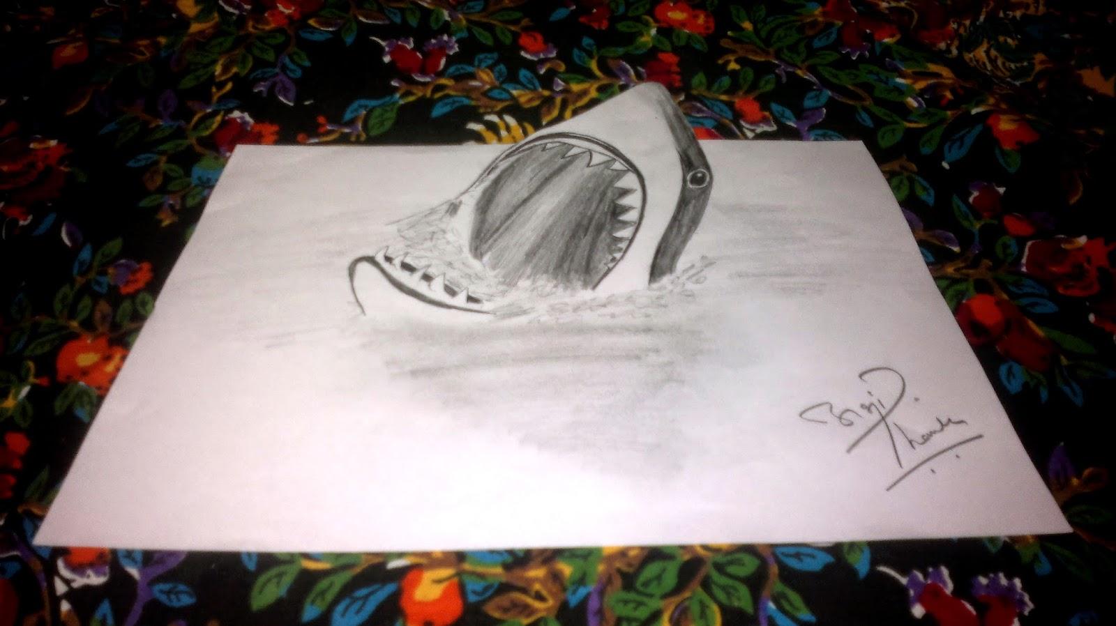 3D Shark Sketch
