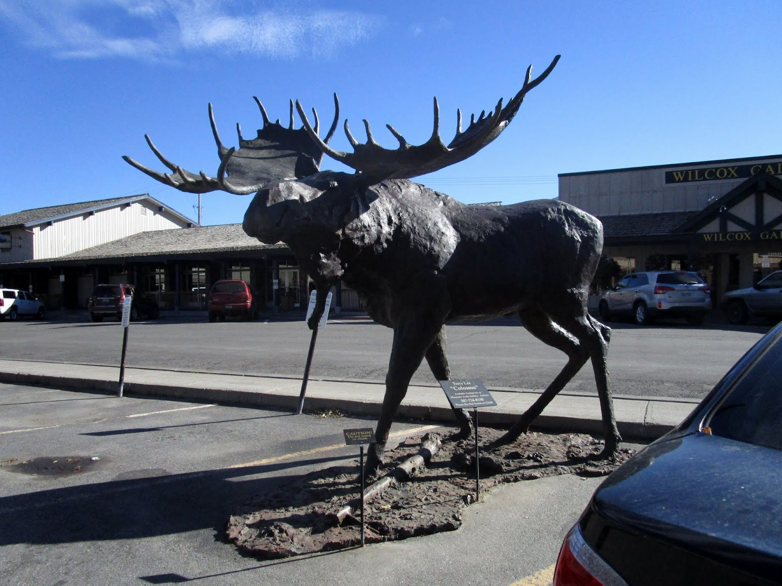 Джексон, Вайоминг (Jackson, Wyoming)